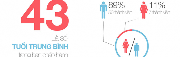 Statistics story on Hanoi SMEs Association [Infographic]