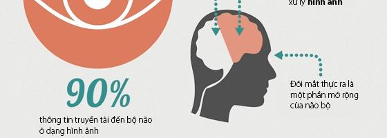 Hội DNT Hà Nội đánh giá cao giải pháp thiết kế infographic của Adamo Studio