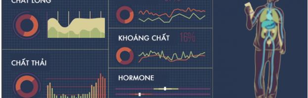 [Infographic] Thận hoạt động như thế nào?