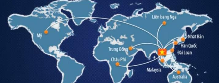 Lao động Việt Nam bỏ trốn tại Hàn Quốc (Motion Graphic)