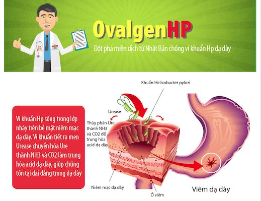 [Infographic] OvalgenHP – Đột phá điều trị khuẩn dạ dày HP từ Nhật Bản